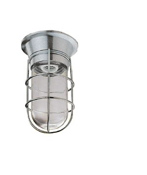 Canopy Hood Lighting Fixture With Tempered Coated Globe And